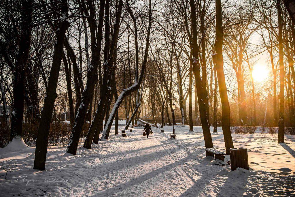 Park Dabrowskiego w Ciechanowie fotograf Ciechanow Przemek Kuzniewski ciechanowiak